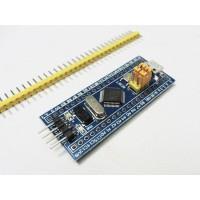 Pack of 2 STM32f103c8t6 Minimum Development Board